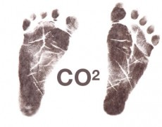 Wine's carbon footprint