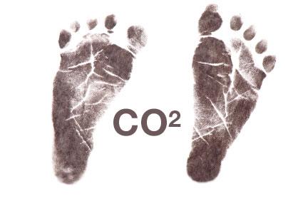 La huella de carbono de Vihucas